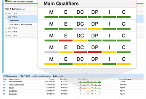 MEDDIC on Salesforce Screenshot 2